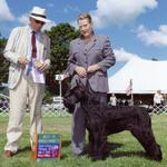 This is me with a very special win in conformation.  This was my first best of breed for Clear Days Giant Schnauzers under a very prestigous judge that once bred the Giant Schnauzer.  Gus is over one year old here.  He made me look good despite my two left feet.